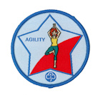 Guide Badges (Leaders Only)