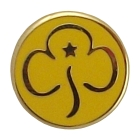 1561-new-brownie-promise-badge